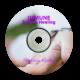 Immune System Healing